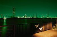 工場と海の夜景 02350001545| 写真素材・ストックフォト・画像・イラスト素材|アマナイメージズ