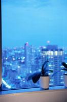 夕暮れの街の灯りが見える部屋の窓辺