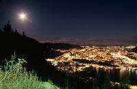 フロイエン山からベルゲン市街を望む