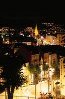 高台から眺めるベルゲンの街とヨハネス教会