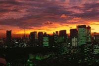 勝どきから望む築地と汐留と東京タワー方面の夜景