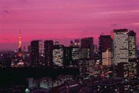 勝どきから望む汐留と東京タワー方面の夜景