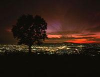 若草山から望む奈良盆地の夜景