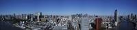 東京タワーと東京スカイツリーと富士山のある風景