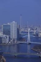 勝どきより隅田川と東京スカイツリーを望む