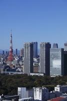 勝どきより東京タワーと浜離宮と汐留を望む