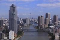 勝どきより隅田川と聖路加タワーと東京スカイツリーを望む 02350002712| 写真素材・ストックフォト・画像・イラスト素材|アマナイメージズ