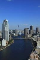 勝どきより隅田川と東京スカイツリーを望む 02350002715| 写真素材・ストックフォト・画像・イラスト素材|アマナイメージズ