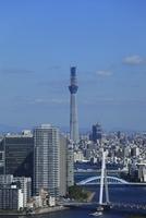 勝どきより隅田川と東京スカイツリーを望む 02350002717| 写真素材・ストックフォト・画像・イラスト素材|アマナイメージズ