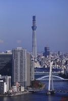 勝どきより隅田川と東京スカイツリーを望む 02350002721| 写真素材・ストックフォト・画像・イラスト素材|アマナイメージズ
