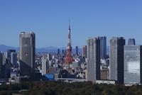 勝どきより東京タワーを望む