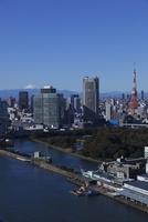 勝どきより東京タワーと浜離宮と富士山を望む