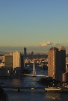 勝どきより隅田川と聖路加タワーと東京スカイツリーを望む 02350002734| 写真素材・ストックフォト・画像・イラスト素材|アマナイメージズ