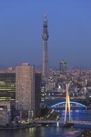 勝どきより隅田川と東京スカイツリーの夕景を望む