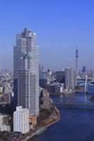勝どきより隅田川と聖路加タワーと東京スカイツリーを望む