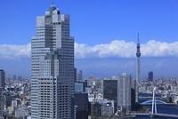 勝どきより聖路加タワーと東京スカイツリーを望む