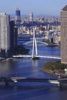 勝どきより隅田川と東京スカイツリーを望む 02350002785| 写真素材・ストックフォト・画像・イラスト素材|アマナイメージズ