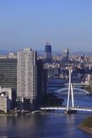 勝どきより隅田川と東京スカイツリーを望む 02350002787| 写真素材・ストックフォト・画像・イラスト素材|アマナイメージズ