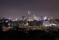 唐沢公園から眺めるみなとみらいの夜景 02350003353| 写真素材・ストックフォト・画像・イラスト素材|アマナイメージズ