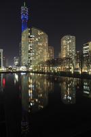 横浜美術館付近から眺めるみなとみらいの夜景