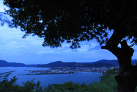 小浜公園展望台から眺める小浜市街の夜景 02350003400| 写真素材・ストックフォト・画像・イラスト素材|アマナイメージズ