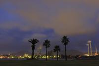 晴海親水公園から眺める工場の夜景 02350003437| 写真素材・ストックフォト・画像・イラスト素材|アマナイメージズ