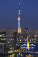 勝どき付近から望む隅田川と東京スカイツリーの夜景