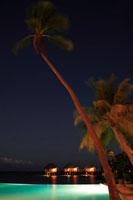 夕暮れのリゾートのプールとヤシの木