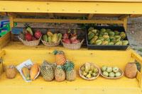 果物の販売所