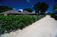 木造赤瓦の民家と白砂の道