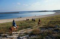 比川浜で乗馬をする人々