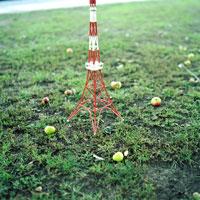 青リンゴと東京タワーのミニチュア