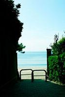 海へ続く小道 02360000306| 写真素材・ストックフォト・画像・イラスト素材|アマナイメージズ