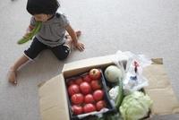 野菜の宅配便
