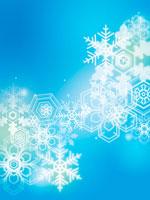 雪の結晶 02362000030| 写真素材・ストックフォト・画像・イラスト素材|アマナイメージズ