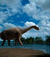 水辺を歩くカマラサウルス