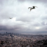 サンフランシスコ上空を飛行するプテラノドン