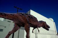 建物とティラノザウルス