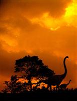 夕焼けの空とブラキオサウルスの親子のシルエット