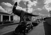 街中を歩くティラノサウルス