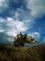 草原を歩くステゴザウルスの後姿