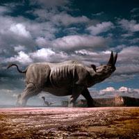 荒野を歩くアリシノサウルス