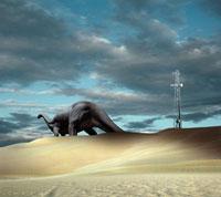 砂漠を歩くアパトサウルス