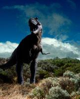荒野で吠えるティラノサウルスレックス
