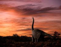 夕暮れの荒野に佇むブラキオサウルス