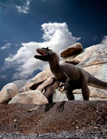 岩場に立つアロサウルス 02364000070| 写真素材・ストックフォト・画像・イラスト素材|アマナイメージズ