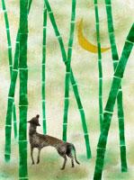 竹林と三日月