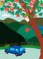 紅葉する木と青い車 02369000066| 写真素材・ストックフォト・画像・イラスト素材|アマナイメージズ