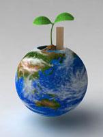 球体鉢から出る双葉 02374000152| 写真素材・ストックフォト・画像・イラスト素材|アマナイメージズ