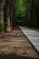 門に続く石畳 大田黒公園
